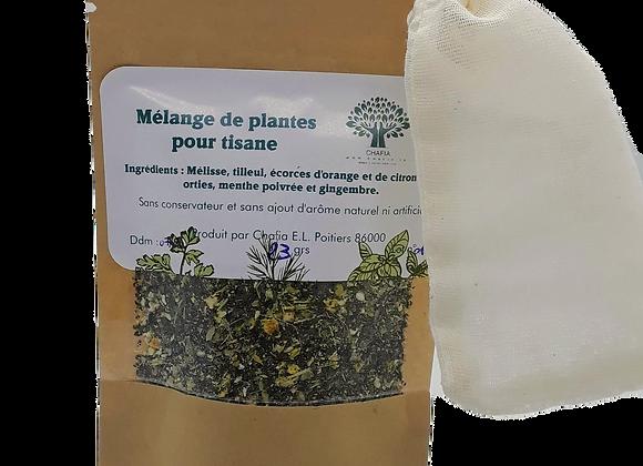 Mélange de plantes pour tisane n°3 -Melting-