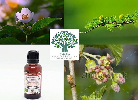 complexe de bourgeons Bio pour l'immunité en gemmothérapie de la boutique Bio en soins et santé de Chafia.fr