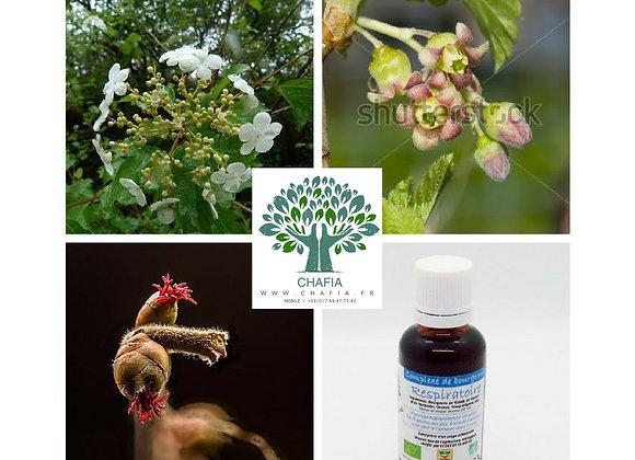 complexe de bourgeons Bio respiratoire en gemmothérapie de la boutique Bio en soins et santé de Chafia.fr