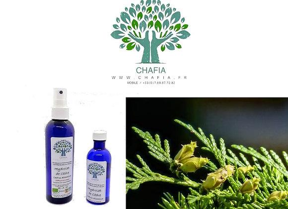 Hydrolat Bio de cèdre : peau et cheveux à tendance grasse