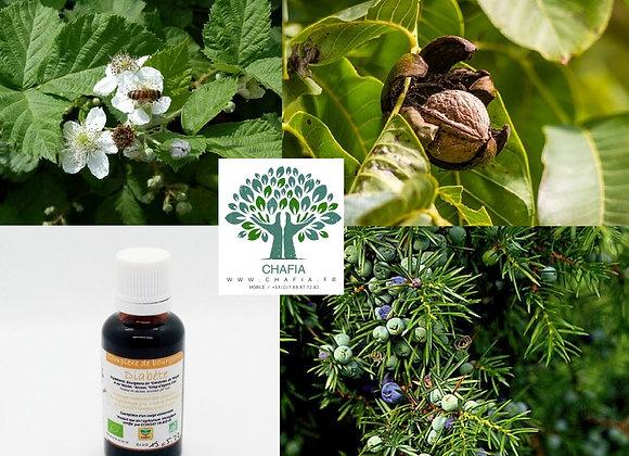 complexe de bourgeons Bio contre le diabète en gemmothérapie de la boutique Bio en soins et santé de Chafia.fr