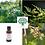 complexe de bourgeons Bio contre l'acné en gemmothérapie de la boutique Bio en soins et santé de Chafia.fr
