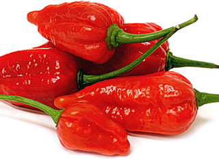 Super Hot Sauce -  #GhostChilli AKA Buht Jalokia