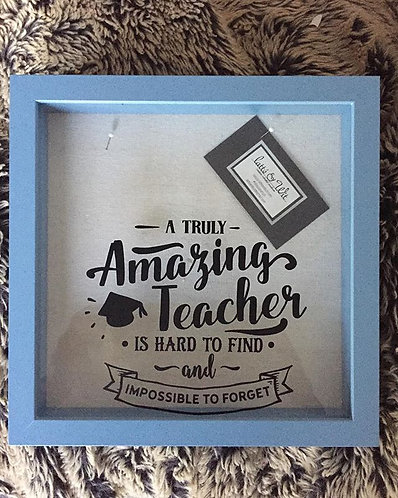 Amazing Teacher