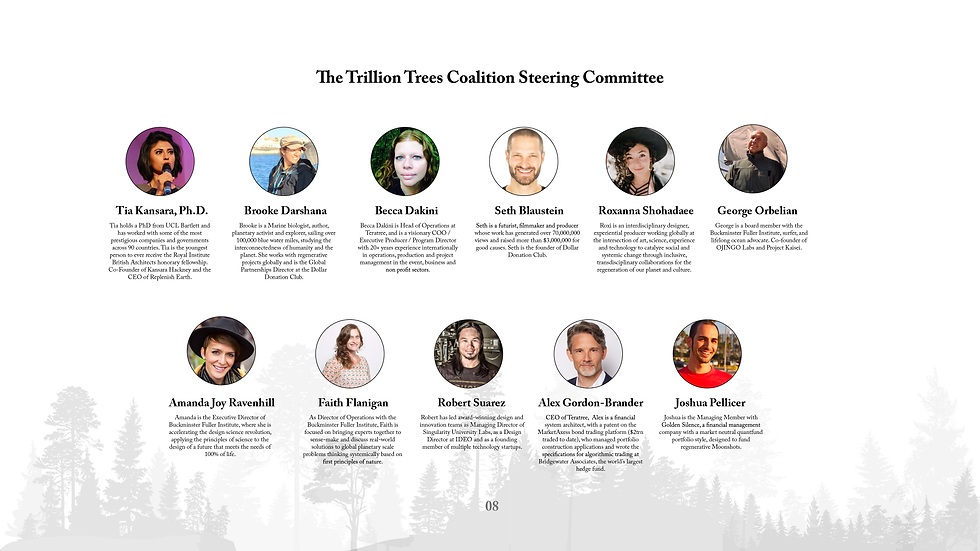 Trillion Trees Summit Deck_Page_09.png