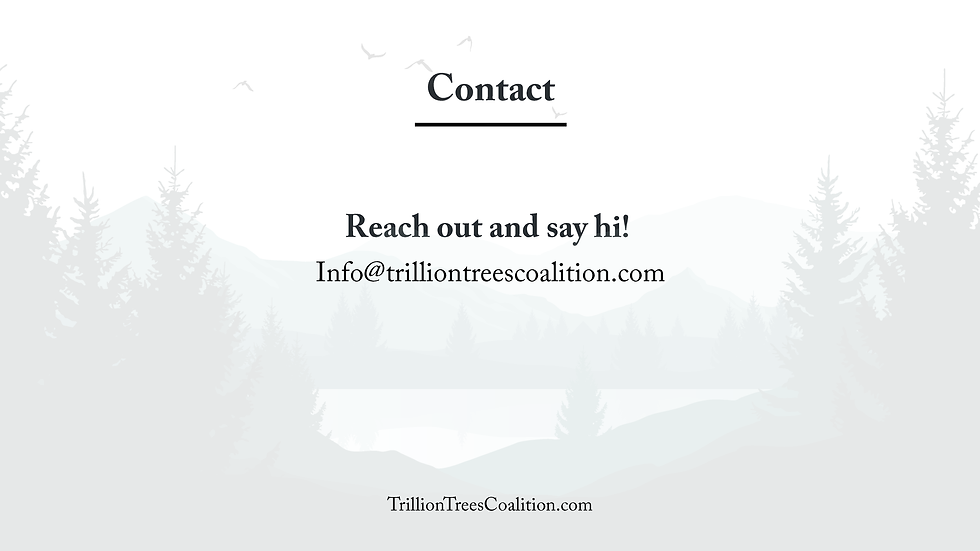 Trillion Trees Summit Deck_Page_11.png