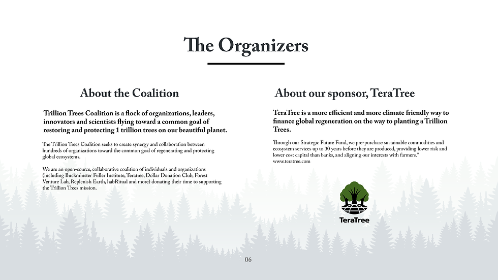 Trillion Trees Summit Deck_Page_07.png