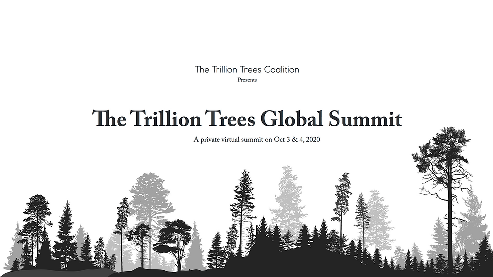 Trillion Trees Summit Deck__Page_00.png