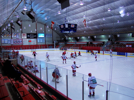Team Lebanon 'writing history' from Canadian hockey hub