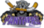 PANTHERS LOGO ICE TINY.jpg
