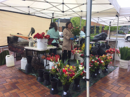 Sherwood Saturday Market