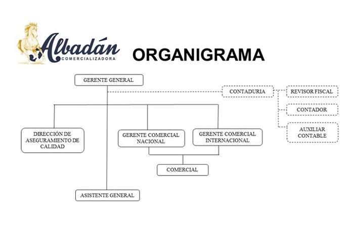 ORGANIGRAMA_edited.jpg