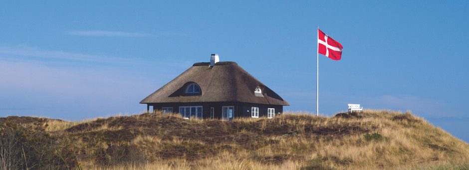Navigating Danish Citizenship - Part 2