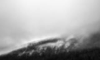 _MG_5312-HDR1.jpg