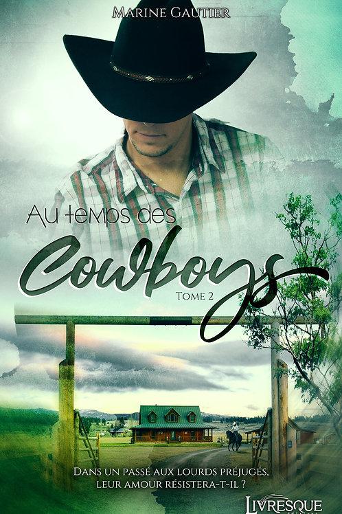 Au temps des Cowboys, tome 2