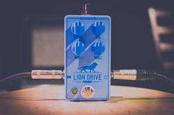 LION DRIVE 1