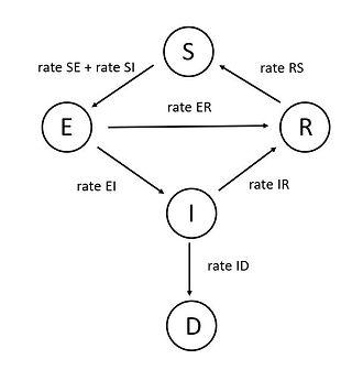 SEIRD_Graph.JPG