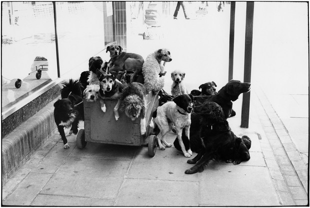 ENGLAND. 1974.