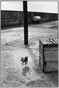 IRELAND. Ballycotton. 1968.