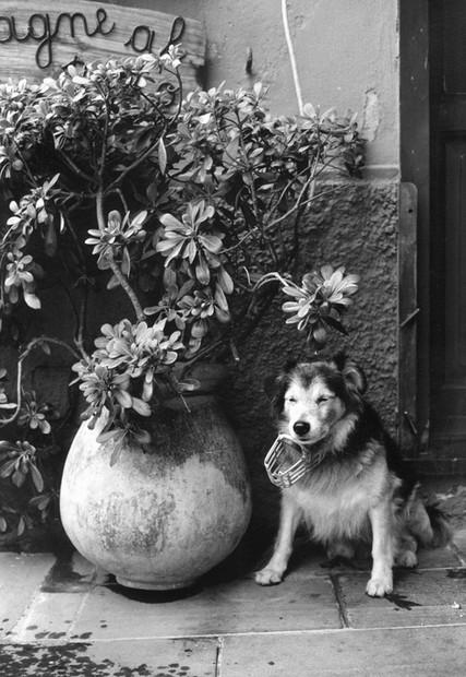 ITALY. Positano. 1982.