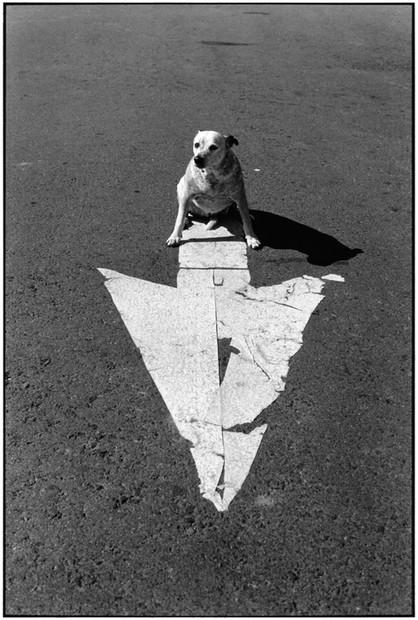 USA. Page, Arizona. 1998.