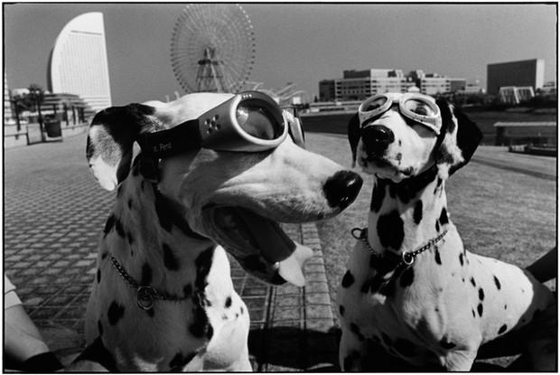 JAPAN. Yokohama. 2003.