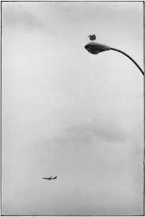 USA. Coney Island. New York. 1975.