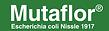 mutaflor logo.png