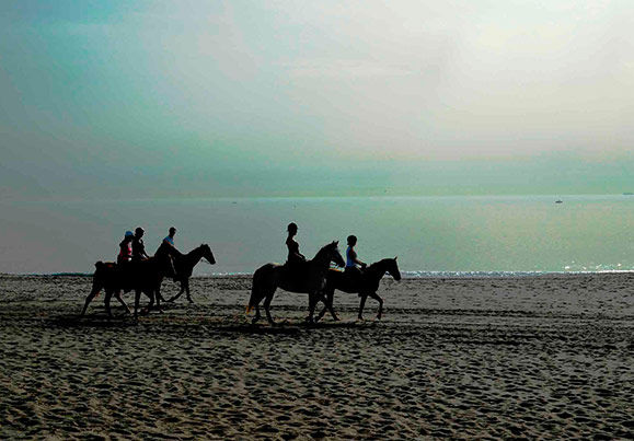 horse riding on the beach Sotogrande