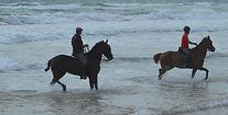 horseriding holidays on Costa del Sol  beach