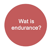 what is endurance riding