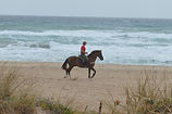 horse riding holiday on Andalucia  beach