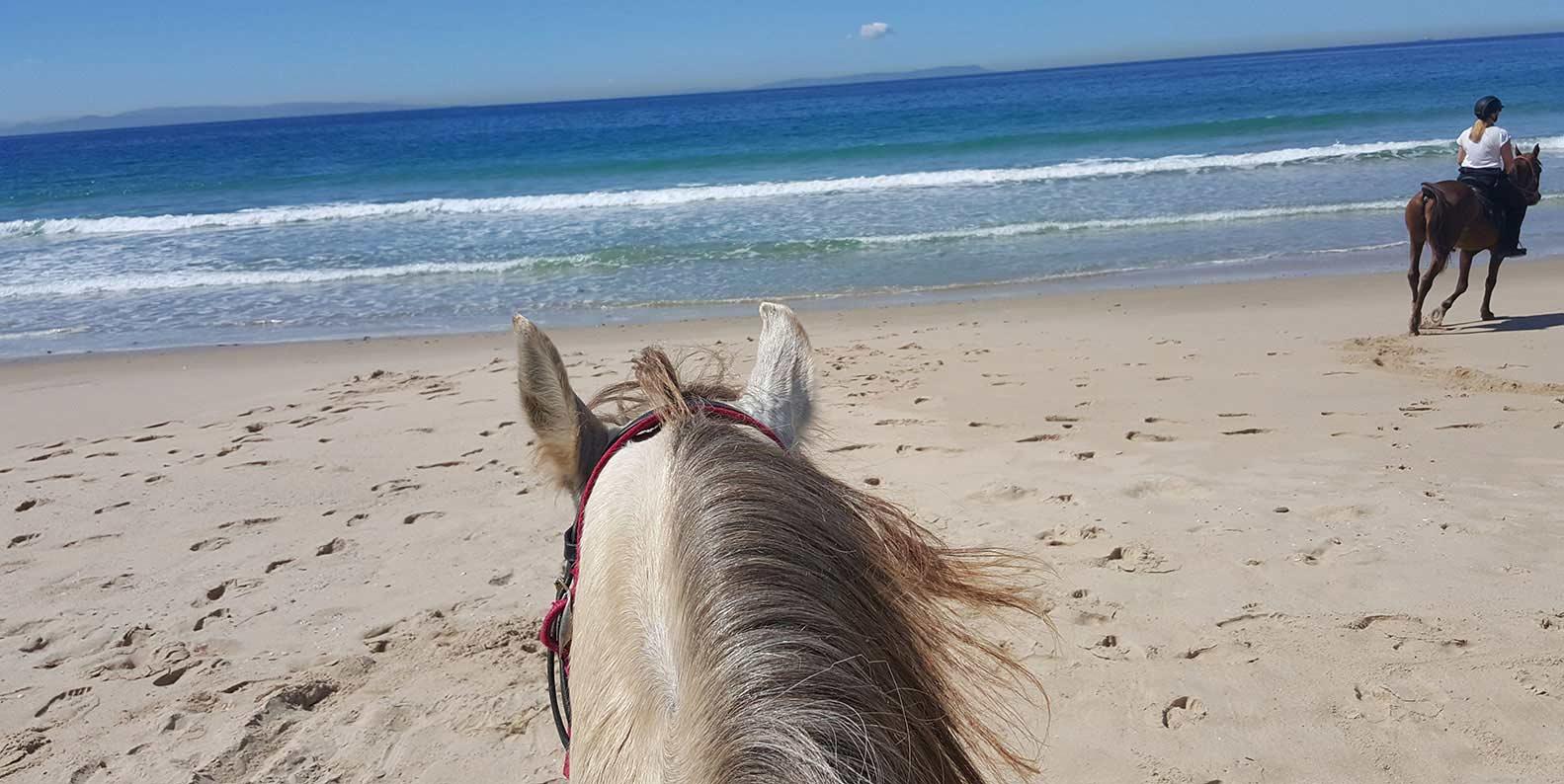 E3 horse riding holidays