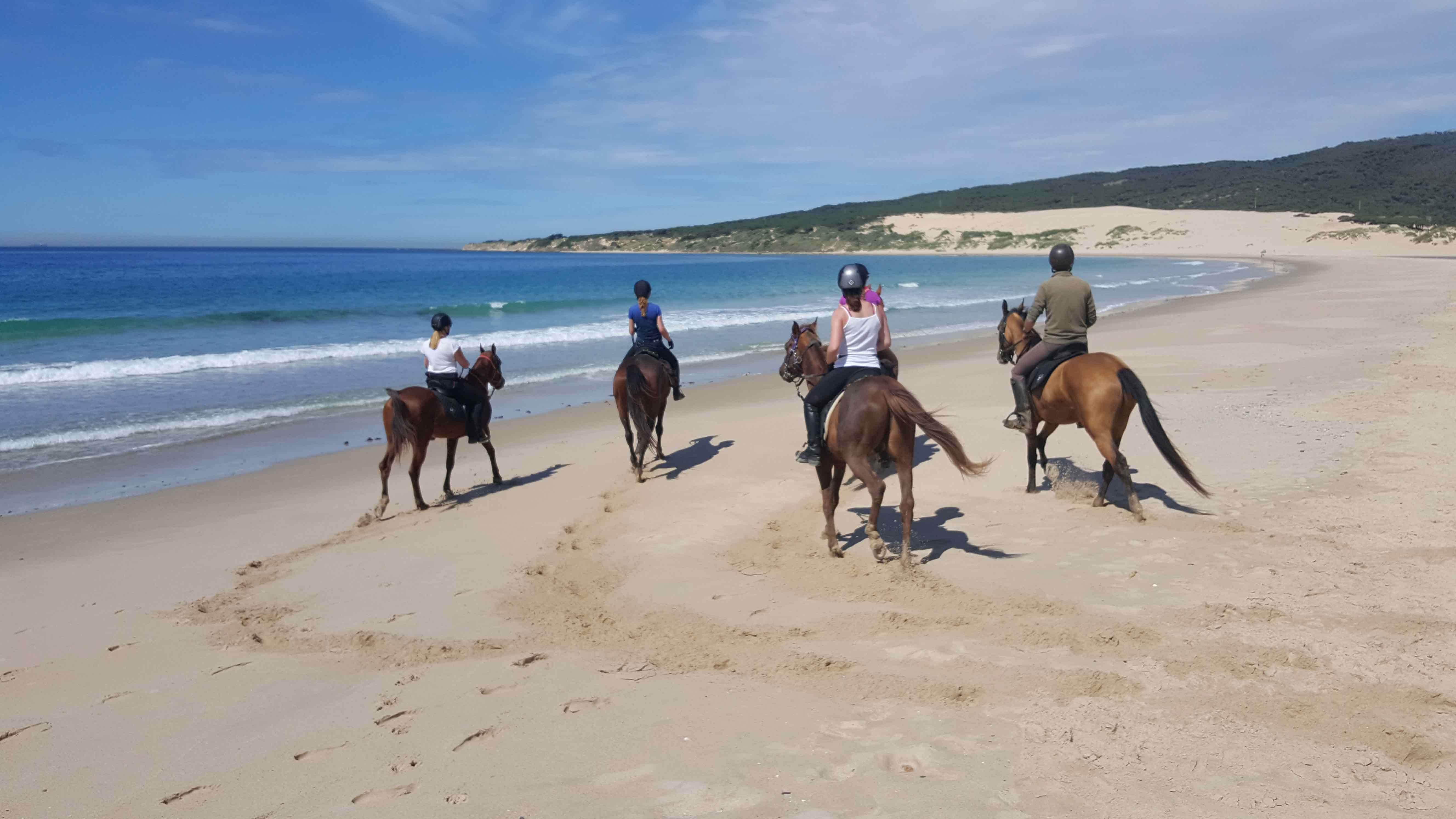 web-rutas-a-caballo-en-la-playa