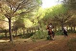 Horseriding Short breaks Andalucia Costa del Sol