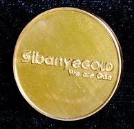 Gold Medal Sibanye 2014.jpg