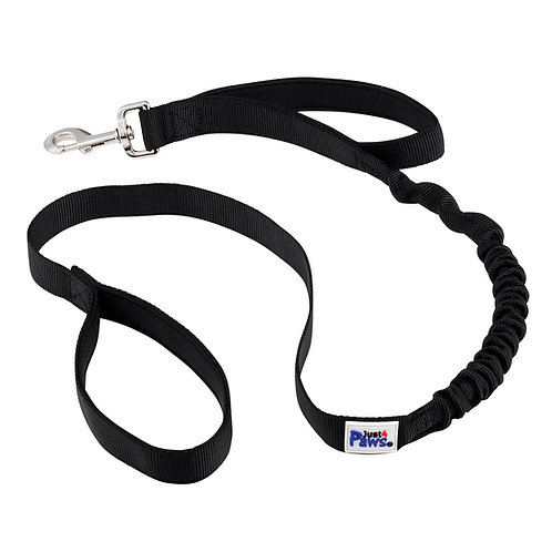 Shock Absorbing Bungee Dog Leash, Gentle Pull – Safe & Comfortable