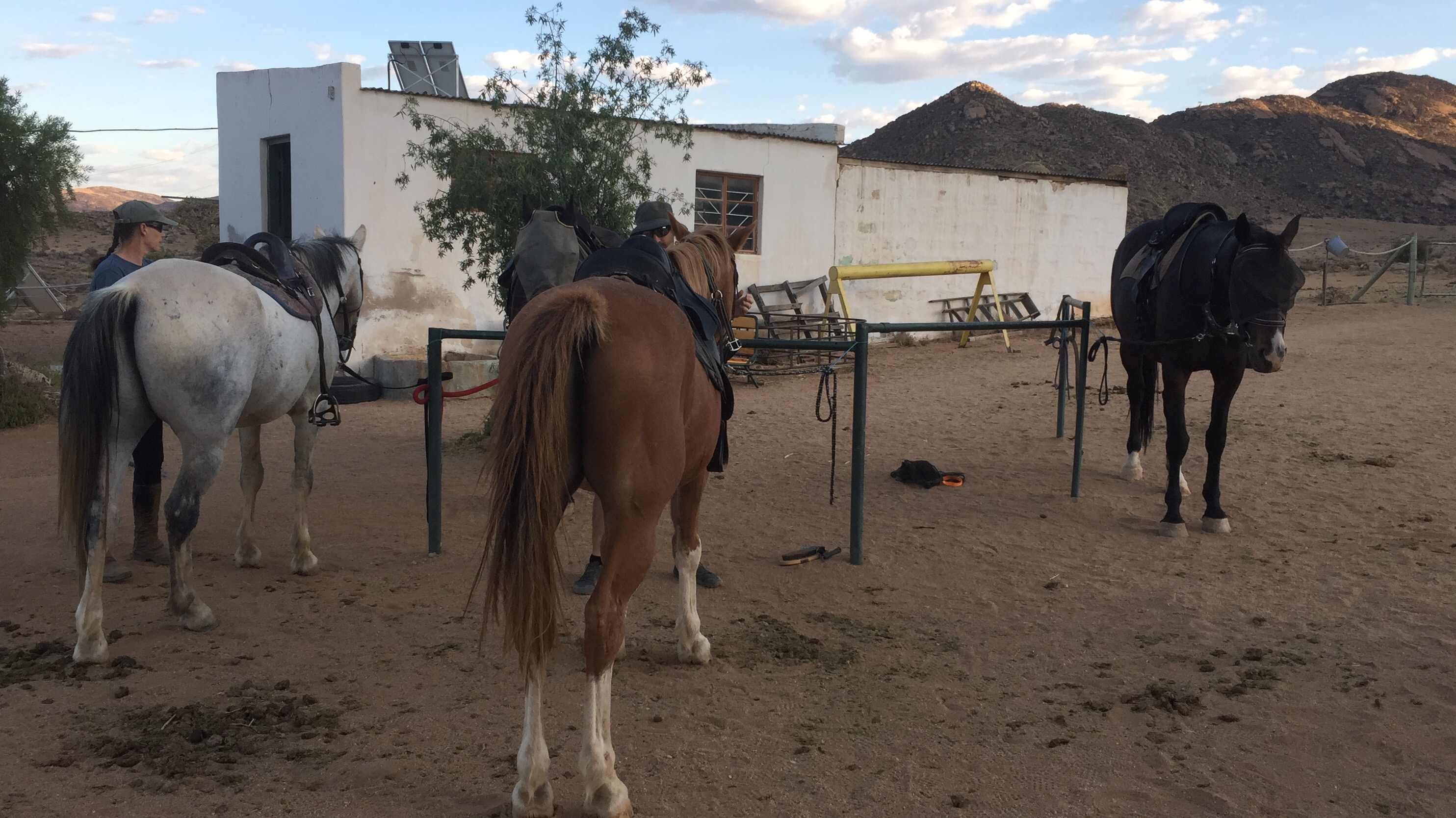 Namaqua Horse Trails