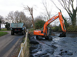 Village pond clearing