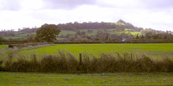 Meon Hill view