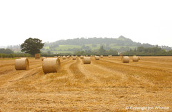 Meon Hill with bales