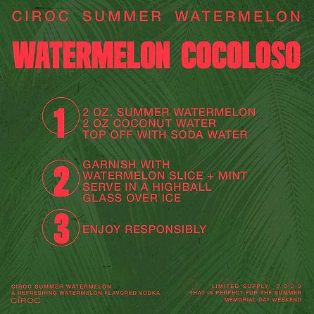 WATERMELONCOCOLOSO.jpg