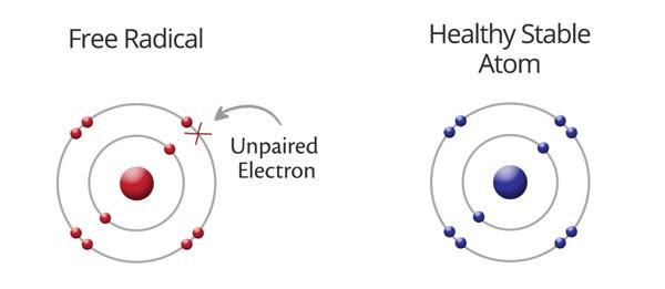 free radicals diagram