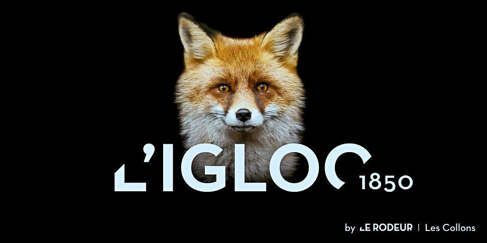 IGLOO1850_edited.jpg