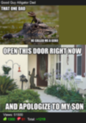 Misha Estrin, Best Memes of all time, Reddit, top internet advice animals,  best alligator geco meme, that one dad, he called me a gecko, open this door right now and apologize to my son, crocodile knocks on mansion door. Alligator gets in house horror stories,   hilarious, laugh, Top 10 internet memes. Worst meme, Best Memedian. Memesha  Best Stand up comedian Minneapolis MN St paul,  , free hugs guy, free hugs university of minnesota , free shrugs , Top Minneapolis comics, comedians, book funnniest clean comedian, Hire clean Stand up Comedian, comedy, finalist funniest person with a day job mall of america, university of minnesota, free hugs twin cities, president University of Minnesota Comedy club, UofMN, UMN, hahahahaha, Laugh, lol, phoenix theater, 4th place Acme's Funniest Person In the Twin Cities Contest, Minneapolis professional entertainer, funnyjunk.com