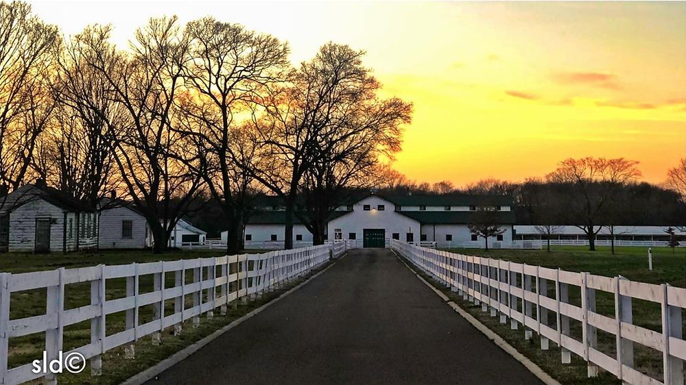 Harlingsdale Farm