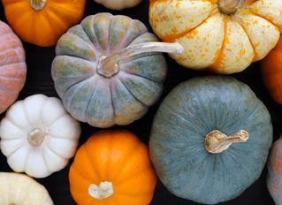 How Pumpkins Build Stronger Teams