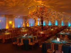 Events - 24427