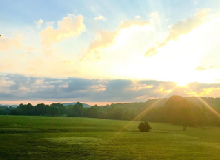 The Perfect Venue For Your Family Reunion Near Nashville, TN