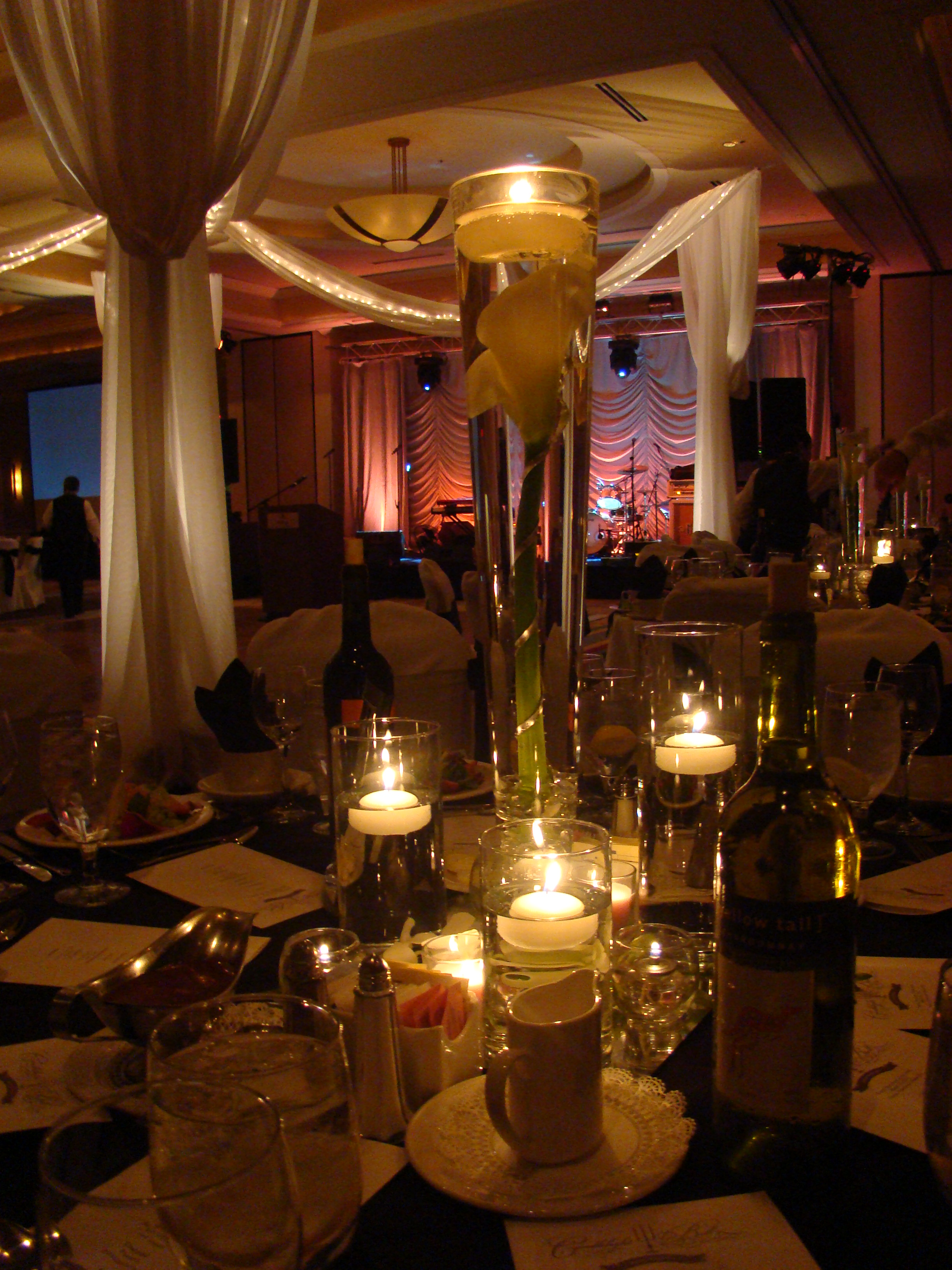 Hilton  Candlelight Ball 3-2012 0126